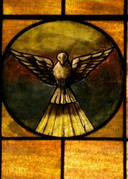dove_in_stained_glass.jpg