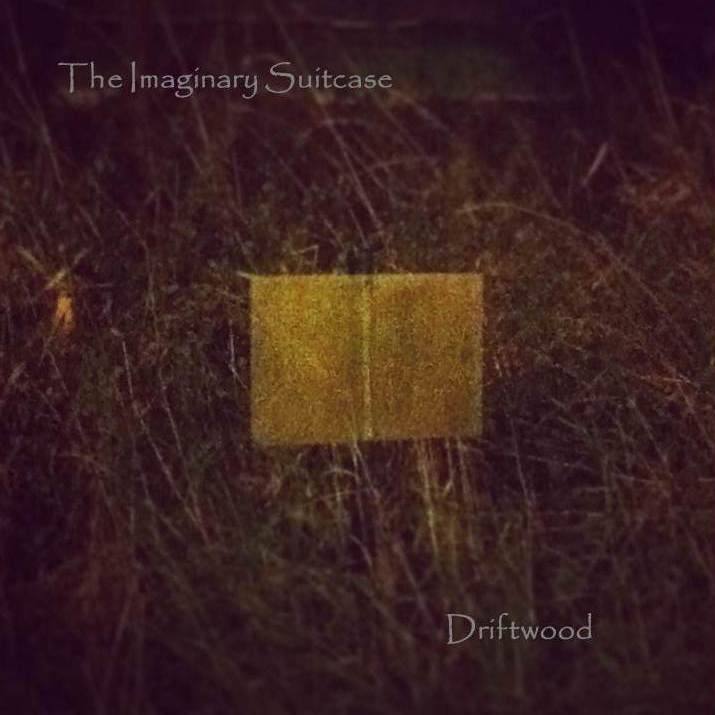 The-Imaginary-Suitcase-Driftwood-artwork.jpg
