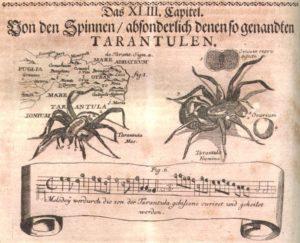 valentinus-514-tarantula-7536411